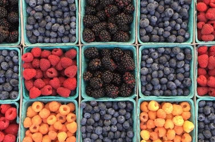 Magdas food Programme Februar Obst